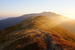 Sera di autunno in montagne carpatiche Fotografia Stock Libera da Diritti