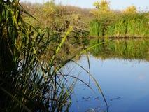 Sera di autunno sul fiume fotografia stock libera da diritti