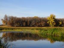 Sera di autunno sul fiume fotografie stock libere da diritti