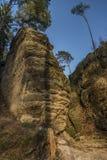 Sera di colore nella foresta con le grandi rocce Fotografie Stock