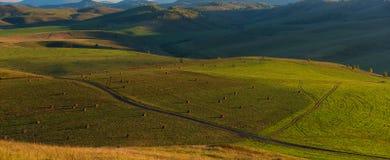 Sera di estate di bellezza nelle montagne Fotografia Stock