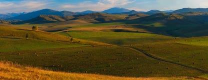 Sera di estate di bellezza nelle montagne Immagine Stock Libera da Diritti
