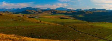 Sera di estate di bellezza nelle montagne Fotografie Stock