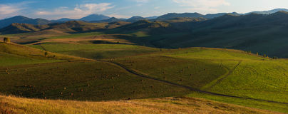 Sera di estate di bellezza nelle montagne Fotografie Stock Libere da Diritti