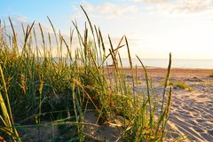 Sera di estate sulla spiaggia fotografie stock libere da diritti