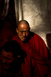 Sera Monastery Debating Monk ponders in Lhasa Tibet Royalty Free Stock Photo