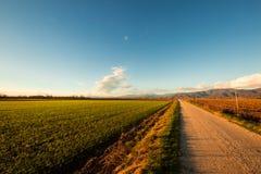 Sera nei campi di Friuli Immagine Stock Libera da Diritti