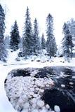 Sera nel lago della foresta con il flusso dell'acqua fotografie stock