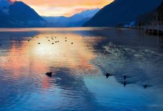 Sera nel lago svizzero, Svizzera Fotografia Stock