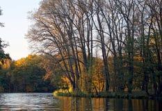 Sera nel parco Raggi del tramonto sul fogliame di autunno Autunno affascinante Fotografie Stock Libere da Diritti