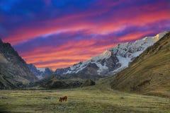 Sera nelle Ande Fotografia Stock Libera da Diritti