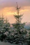 Sera nelle montagne fotografie stock libere da diritti