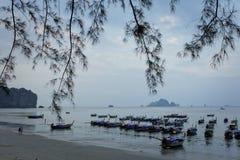 Sera sulla spiaggia tropicale Fotografie Stock Libere da Diritti