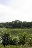 Serangoon flod Royaltyfri Bild