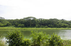 Serangoon-Fluss Lizenzfreie Stockfotografie