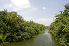 Serangoon River, Singapore Stock Photography