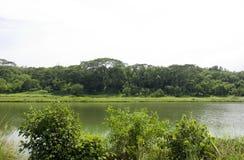 Serangoon rzeka Fotografia Royalty Free