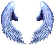 Seraphim Angel Wings 2. Digitally hand painted angel wings on a white background Stock Images