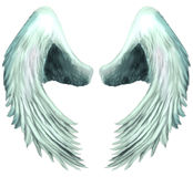 Seraphim-Engel Wings 1 Stockfoto