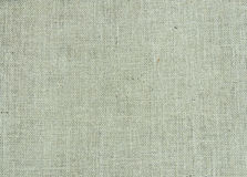 Serapilheira textured foto de stock