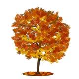 Serbal del árbol con las hojas del rojo y del amarillo foto de archivo