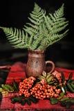 Serbal, helecho y jarro de cerámica Foto de archivo