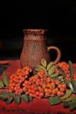 Serbal y jarro de cerámica Imagenes de archivo