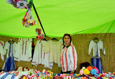 ` Serbare Campeneasca ` in Visina, Tulcea, Roemenië stock foto's