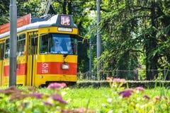 Serbia, Belgrade Tram`s. Old Yellow Tram royalty free stock photography