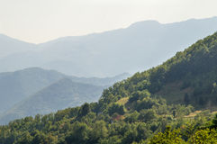 Serbia: Dinaric Alps Zdjęcia Stock