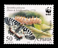 Serbia on postage stamps. Cancelled postage stamp printed by Serbia, that shows Butterfly, circa 2016 royalty free stock photo