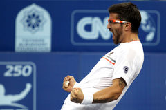 Serbia's Janko Tipsarevic celebrate after winning Stock Photo
