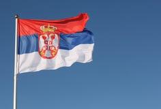 serbian флага Стоковое Фото