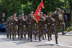 Serbian army guards with guards with flag royalty free stock image