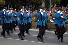 Serbian army guards unit in march Royalty Free Stock Photo