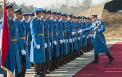 Serbian army soldiers on the red carpet Stock Image