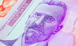 Serbian 50 dinar currency banknote, close up. Serbia money RSD c. Ash, macro view, portrait of Stevan Mokranjac stock image
