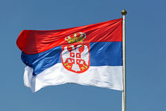 Serbian flag. Serbian national flag tricolour with eagles and crown royalty free stock photo
