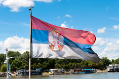 Serbian flag Royalty Free Stock Image
