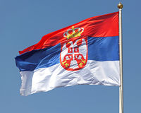 Serbian flag. With white eagles and crown royalty free stock photos