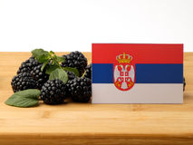 Serbian flag on a wooden panel with blackberries isolated on a w. Hite background stock photos