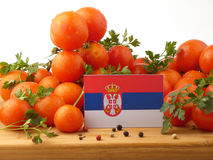 Serbian flag on a wooden panel with tomatoes isolated on a white. Background royalty free stock photo