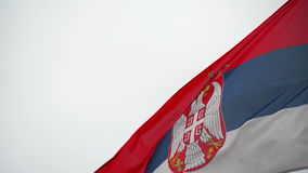 Serbian National Flag flapping in the strong wing, waving banner. stock video