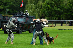 Serbian police force in action Royalty Free Stock Photography