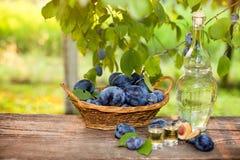 Serbian rakia with shot glasses and plum basket Stock Images
