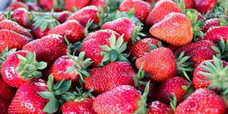 Serbische Erdbeeren Abschluss oben lizenzfreies stockbild