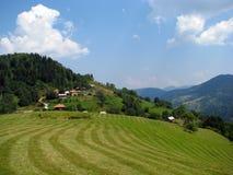 Serbisches Feld Stockfotos