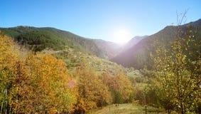 Serbisk naturnedgång i området av Drvengrad och Mokra Gora Royaltyfri Foto