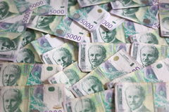 Serbisk valuta - en hög av 5000 dinar sedlar Arkivbild