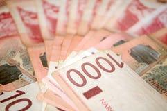 Serbiska dinarpengar, sedlar av 1.000 dinar Royaltyfria Bilder